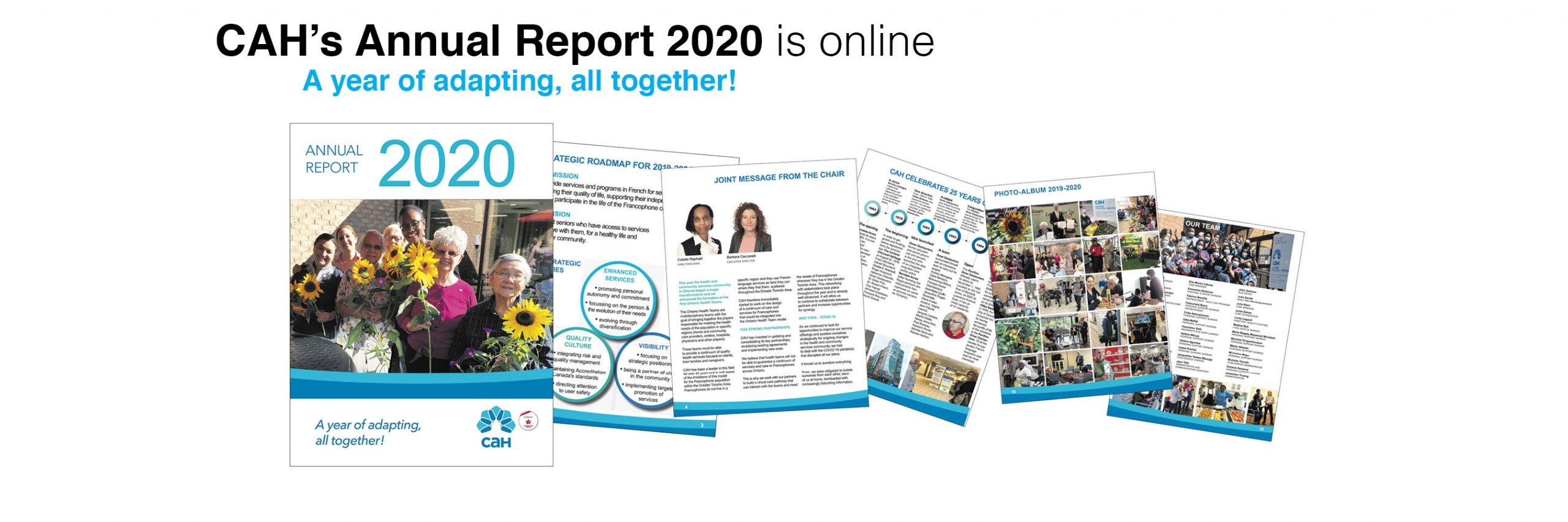 CAH's Annual Report 2020