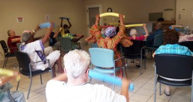 Adult Day Program (ADP Toronto)